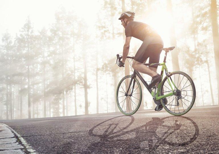 Top 3 Eufab Fahrradträger:  Premium 2, Premium 3 & Luke 4