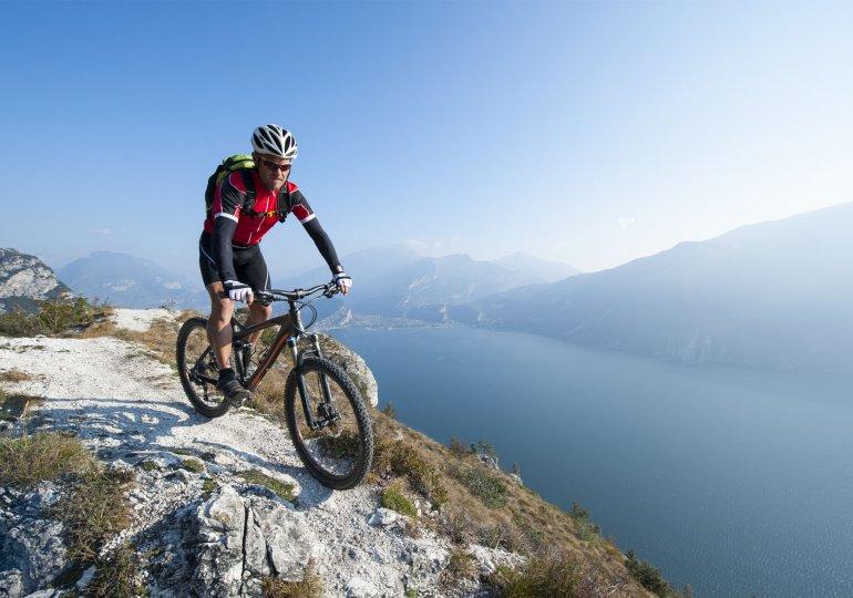 Top 3 Thule Fahrradträger für die Anhängerkupplung & Dachträger
